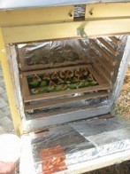 How To Build A Solar Food Dehydrator Off The Grid News