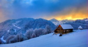 5 Ways To Winter-Proof Your Homestead Even When It's 'Too Late'