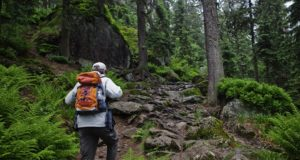 The 5 Most Important Survival Skills When You're Lost In The Wilderness