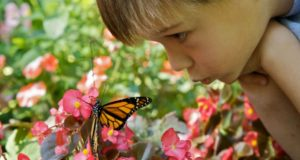 4 Simple Ways To Cure Nature Deficit Disorder In Your Kids