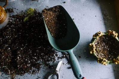 Here's The Best Use For Your Old Potting Soil
