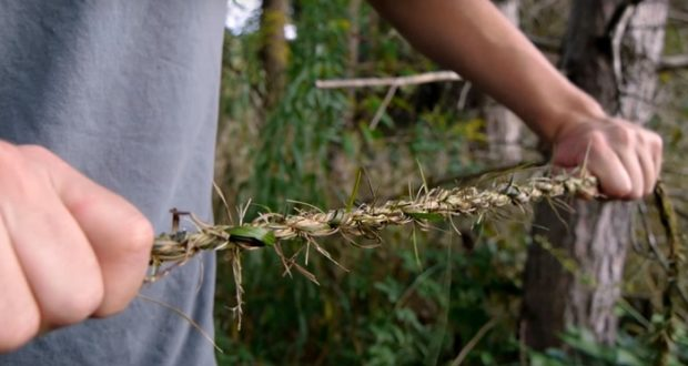 How To Make Off-Grid 'Survival Rope' Using Nothing But Grass