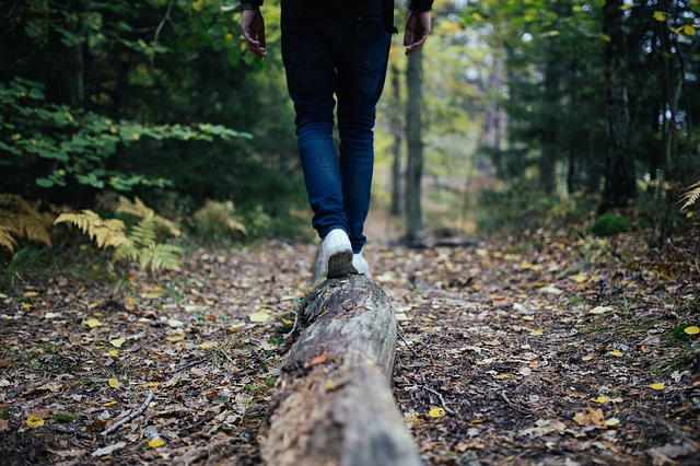 Lost In The Woods: 5 Tricks For Finding Your Way ... Without A Compass