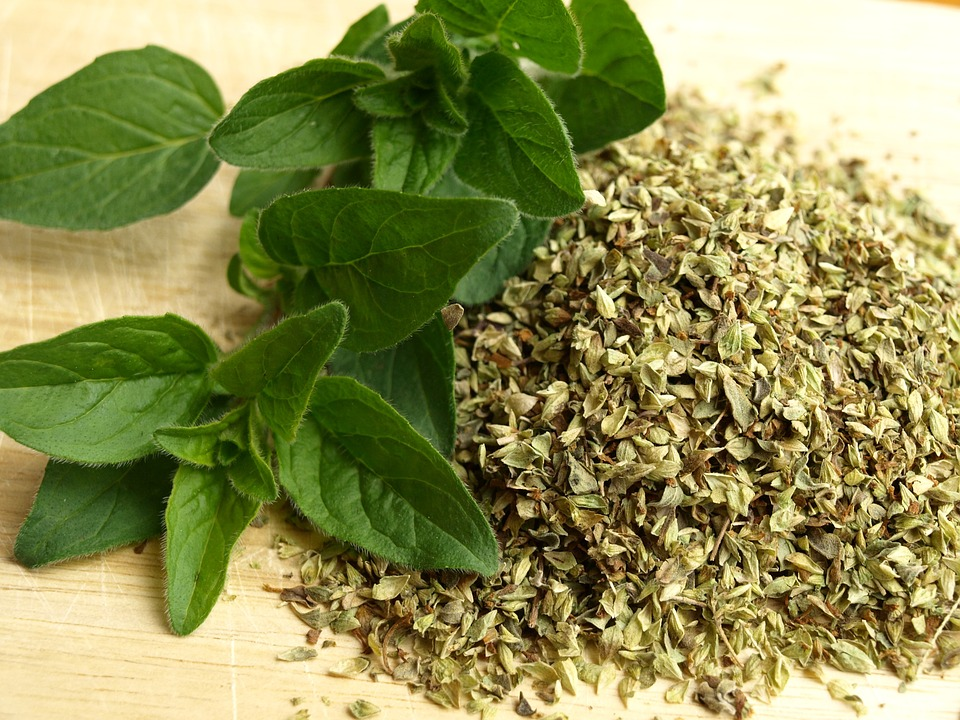 5 Simple Steps To Make Your Own Oil Of Oregano