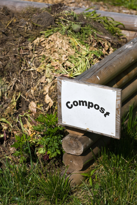 Using Food Scraps In Your Garden