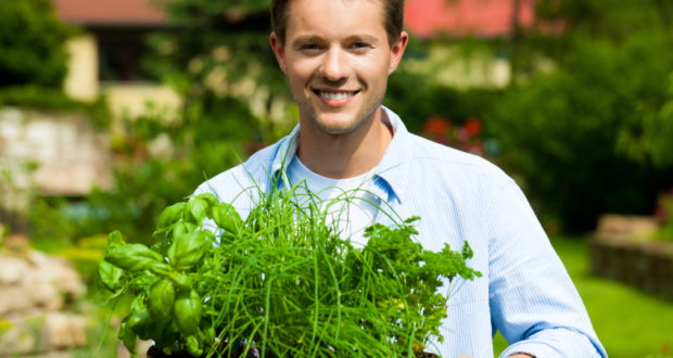 What You Must Do When Starting Your Herb Garden