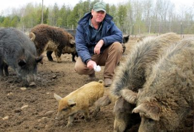 Hog farmer Mark Baker