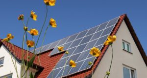 Court Rules Off-The-Grid Living Is Illegal