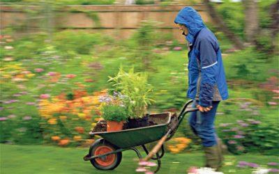 Wet Weather Gardening: 6 Tips When The Rain Just Won't Go Away