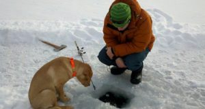Survival Ice Fishing: 5 Essential Tips