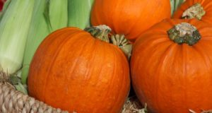 10 Unique Off-Grid Ways You Can Use A Fresh Pumpkin This Fall