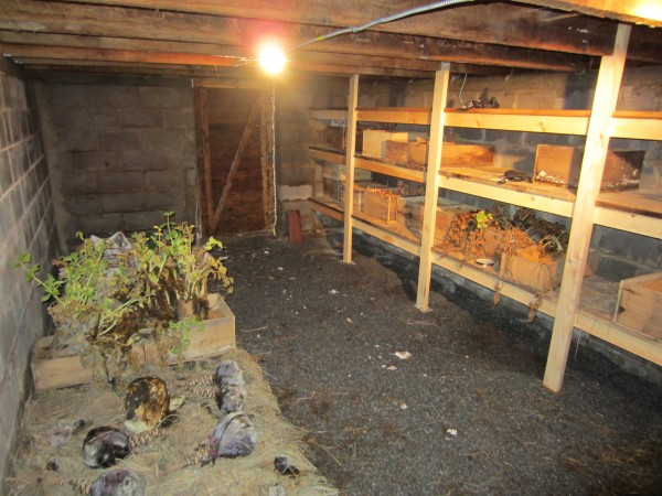 The 8 Fundamentals To Digging A Root Cellar Off The Grid