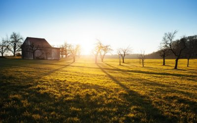 Your First Homestead: Costs You May Not Have Considered