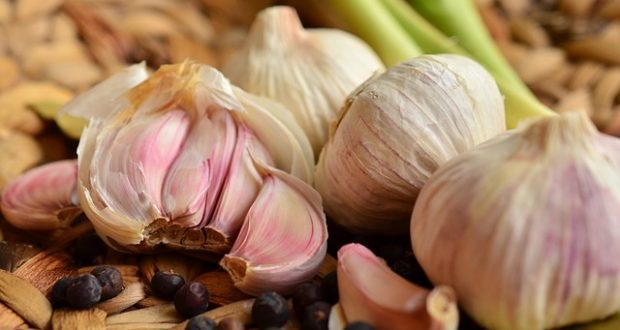 Garlic Planting Secrets Of Fall Gardeners