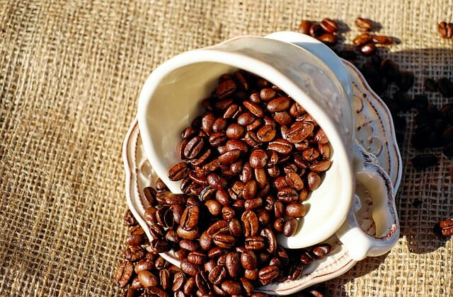 8 Coffee Substitutes You Can Grow In ANY Climate