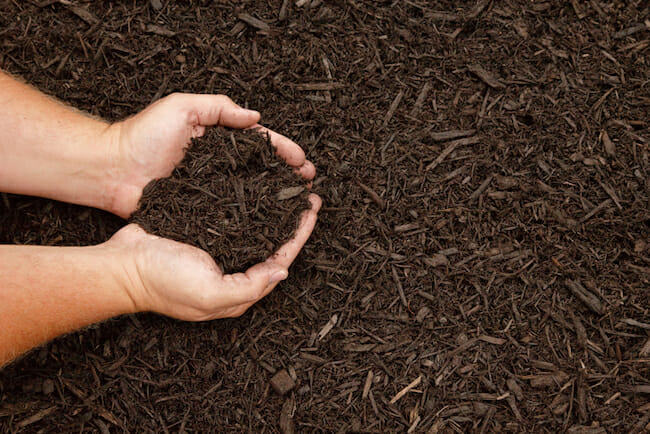 Everything You've Wanted To Know About Mulching (But Didn't Want To Ask)