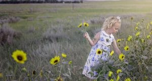 Lots of Good Reasons To Plant Sunflowers This Year