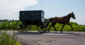 Amish Uber Launched Just With One Buggy And A Dream – But No Online App